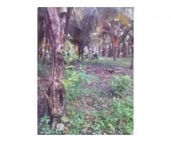 Rush Sale Agricultural Lots for Sale in GenSan