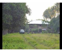 2 ha Mango Farm Livestock Koronadal City
