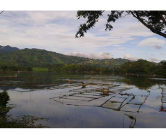 800 square-meter lot in Lake Sebu