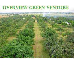 MONTHLY LOT INSTALLMENT - Overview Green Venture