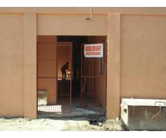 New Boarding House For Rent at Calumpang